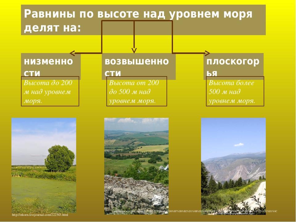 Равнины по высоте над уровнем моря делят на: низменности возвышенности плоскогорья Высота до 200 м над уровнем моря. Высота от 200 до 500 м над уро...