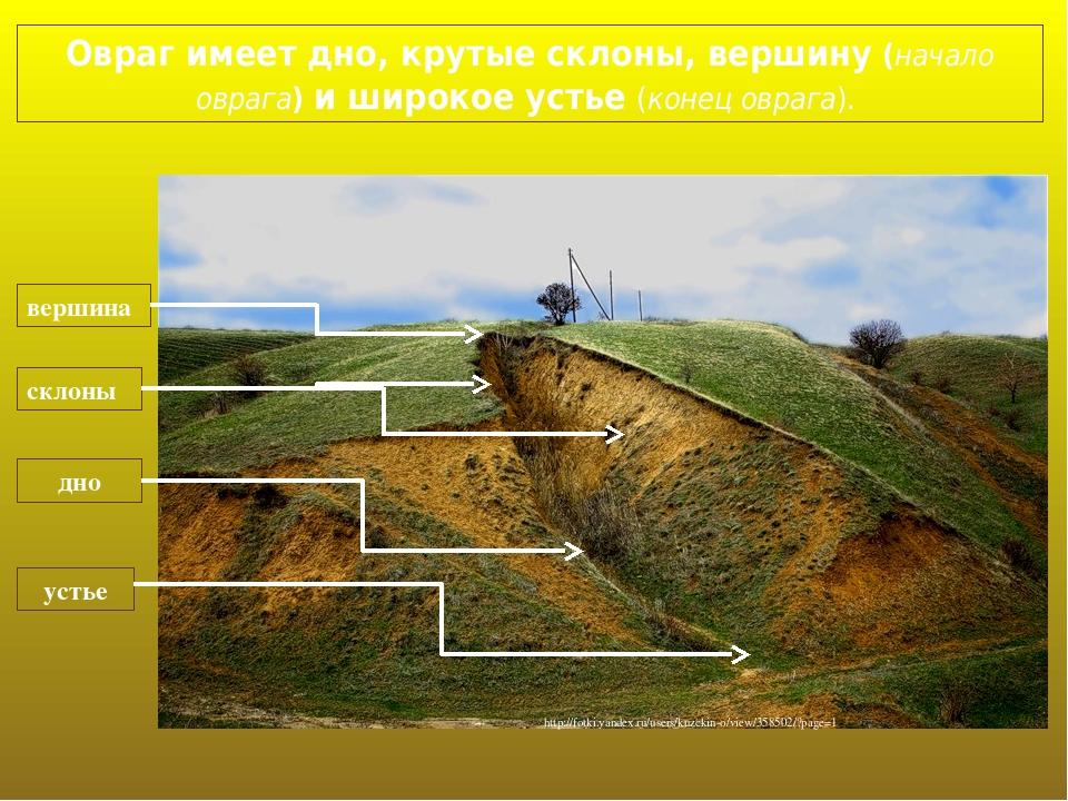 Овраг имеет дно, крутые склоны, вершину (начало оврага) и широкое устье (конец оврага). дно склоны устье вершина http://fotki.yandex.ru/users/kuzck...