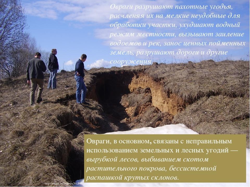 Овраги, в основном, связаны с неправильным использованием земельных и лесных угодий — вырубкой лесов, выбиванием скотом растительного покрова, бесс...