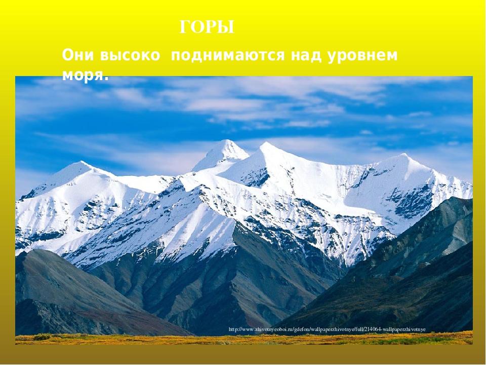 ГОРЫ Они высоко поднимаются над уровнем моря. http://www.zhivotnyeoboi.ru/gdefon/wallpaperzhivotnye/full/214064-wallpaperzhivotnye