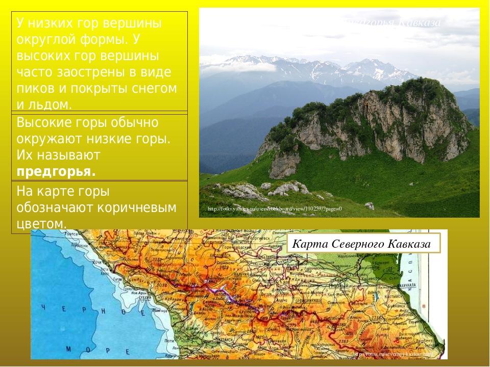 У низких гор вершины округлой формы. У высоких гор вершины часто заострены в виде пиков и покрыты снегом и льдом. Высокие горы обычно окружают низк...