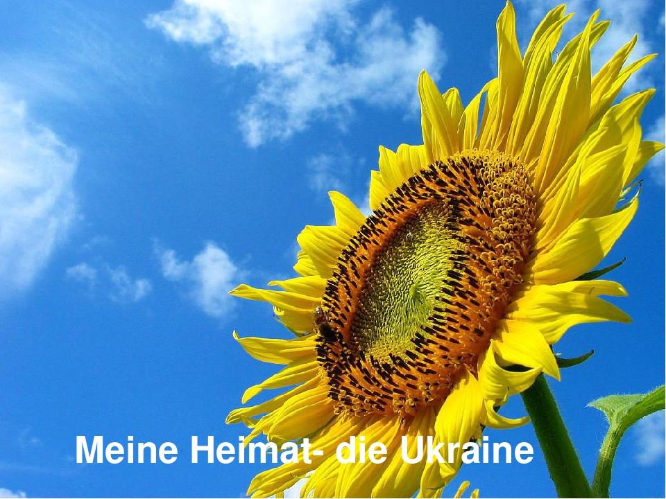 Meine Heimat- die Ukraine
