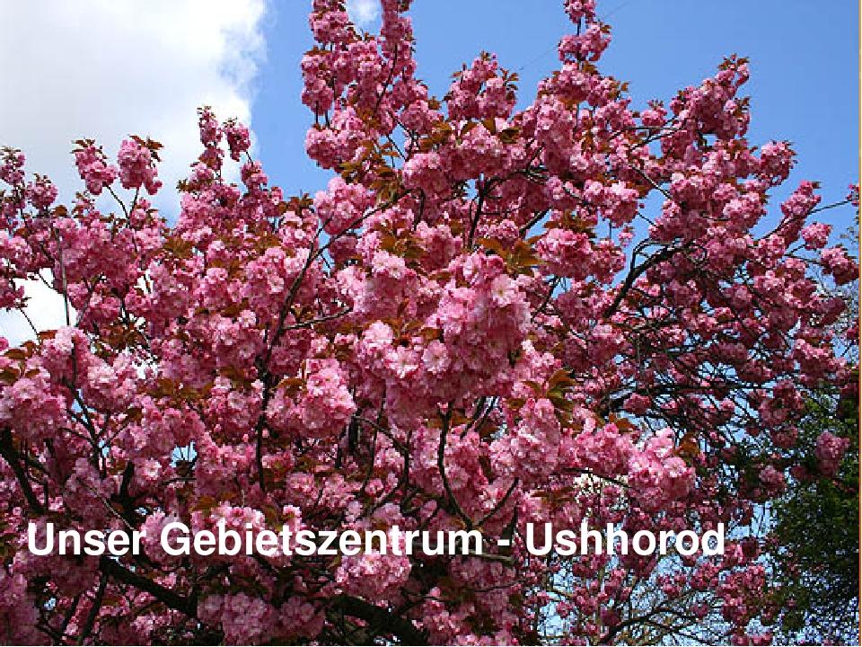 Unser Gebietszentrum - Ushhorod
