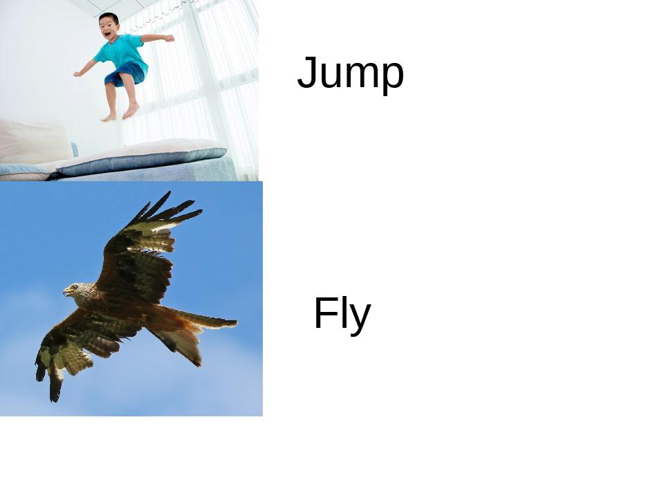 Jump Fly