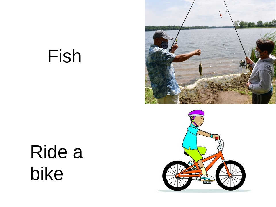 Fish Ride a bike