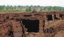 Підприємства із видобутку торфу на Київщині планують розпродати