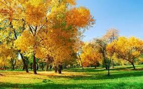 Цікавинки про осінь - Осінь-щедра чарівниця
