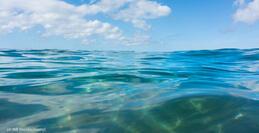 Что вы знаете об открытом море? | ShareAmerica